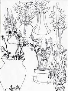 Santiago  Evolution Of An Artist  Spring Contour Drawings