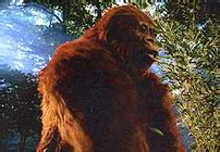 gigantopithecus walking  wikis   walking