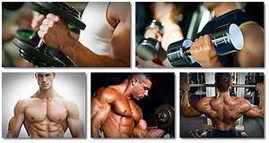 Forum 2021  Buy Clenbuterol Online Bodybuilding Program
