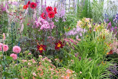 Hardys Cottage Garden Plants