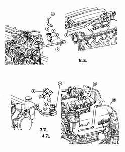 2004 Dodge Ram 1500 Emission Control Vacuum Harness  3 7l