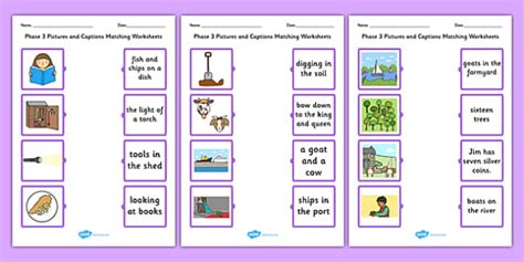 phase  pictures  captions matching worksheets phase