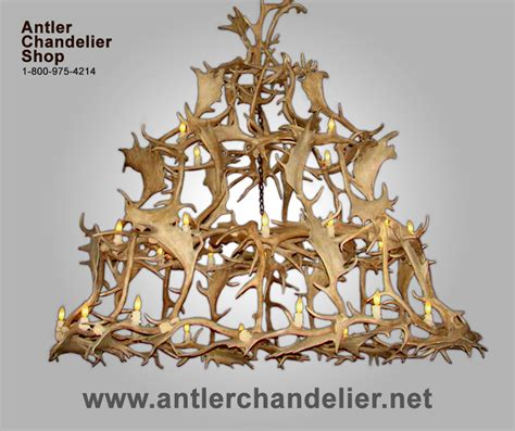 Antler Chandelier Shop by Xl Antler Chandeliers Antler Chandelier