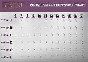 Eyelash Extension Style Chart D Curl Synthetic Mink Lashes 20 Rows Mixed Option
