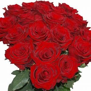 Begleitpflanzen Für Rosen : rote rosen und champagner verschicken lassen ~ Lizthompson.info Haus und Dekorationen