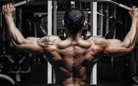 Patients with tight hamstrings tend to develop. 5 Back Exercises You Should Be Doing