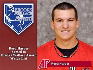 APSU Governors Baseball's Reed Harper named to Brooks ...