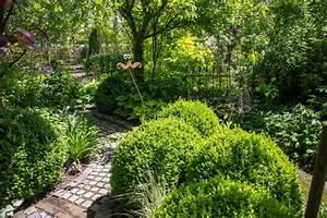 Schädlinge Im Garten : buchsb ume im garten zucht pflege sch dlinge ~ Lizthompson.info Haus und Dekorationen