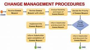 Process Flow Diagram Change Management
