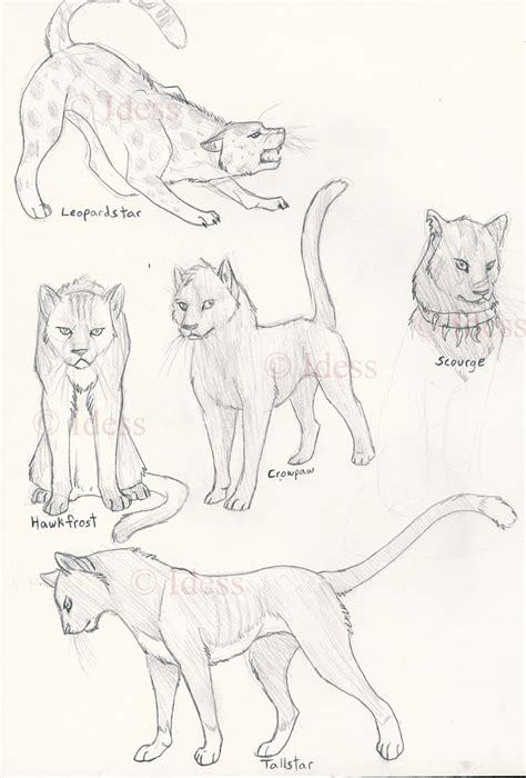 warrior cats  idess  warriorsclub  deviantart