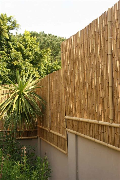 pictures of bamboo fences bamboo fences brightfields natural trading company
