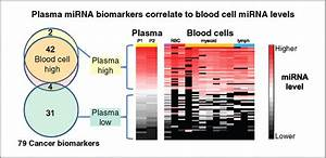 Blood Cell Origin Of Circulating Micrornas  A Cautionary Note For Cancer Biomarker Studies
