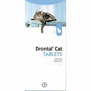 BAYER Drontal Allwormer Roundworms, Tapeworms, Hookworms ...