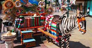 Things To Do In Tijuana  Mexico  What You Need To Know