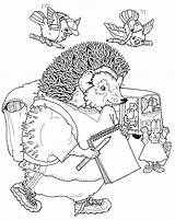 Coloring Hedgehog Pages Animals Coloringpages1001 sketch template