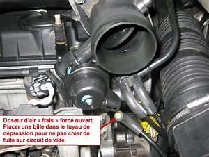 Debimetre D Air Hs Symptome : puissance brid e ~ Gottalentnigeria.com Avis de Voitures