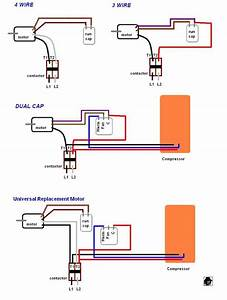 Electrical Wiring Diagram Ac Motor Capacitor
