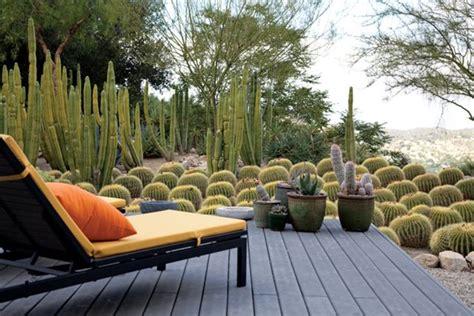 cactus los angeles a waterwise cactus garden photo gallery gallery garden design