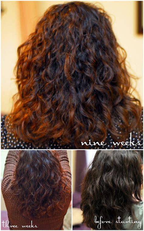 8 Homemade Shampoo Recipes for Beautiful Hair!   Tip Junkie