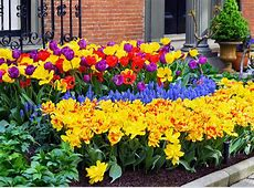 40 Colorful Garden Ideas Color Explosion