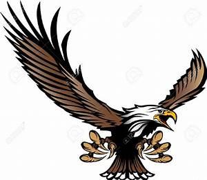 Bald Eagle clipart hawk - Pencil and in color bald eagle ...