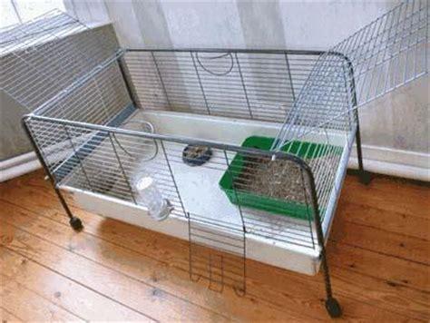 amis vert bain de bretagne gt gt grande cage ou semi libert 233 les 3 petits lapins