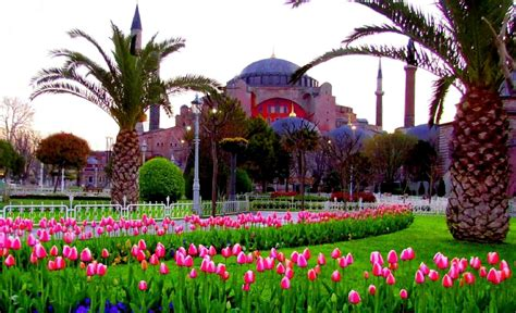 istanbul tulip festival in emirgan istanbul tulip festival 2016 yasmak hotel collection magazine