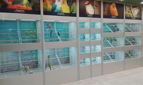 Arredamenti Per Acquari Acquari D Autore Specialisti In Arredamento Negozi Animali