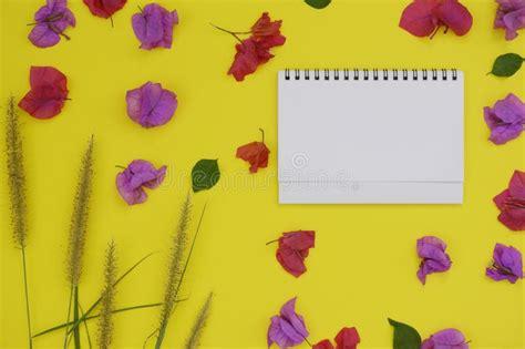 libro sui fiori immagini di riserva di con fiori fondo i modello rosso su