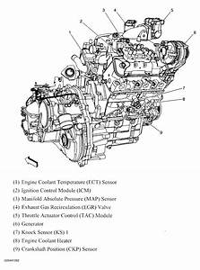 Diagram  350 Vortec Engine Diagram