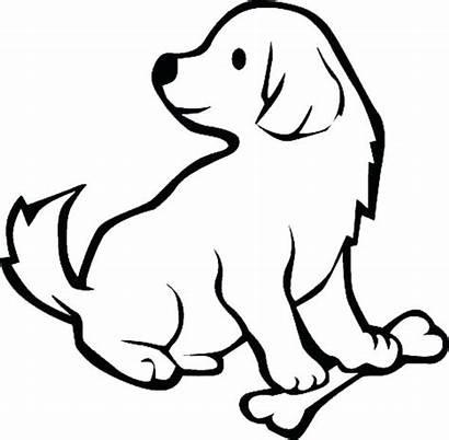Retriever Coloring Golden Puppy Anjing Gambar Sketsa