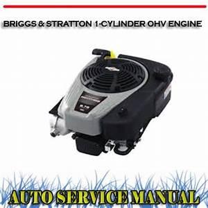 Briggs  U0026 Stratton 1