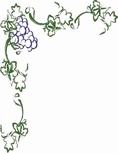 Vine Border Grape Borders Wine Clipart Clip