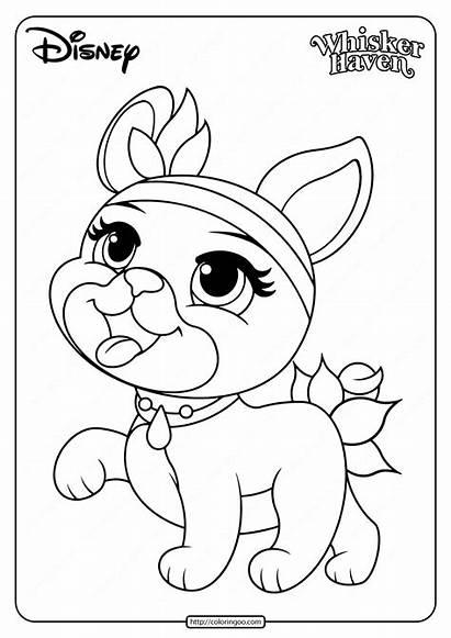 Coloring Palace Pets Printable Olive Pdf Coloringoo