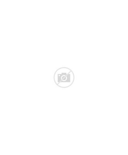 Gropius Taschen Walter Bauhaus Architecture Books