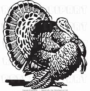 53 Free Turkey Clipart Black And White - Cliparting.com