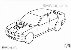 Bmw E36 Engine Wiring Harnes