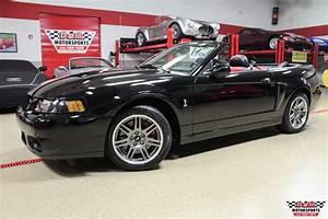 2003 Ford Mustang SVT Cobra 10th Anniversary Convertible Stock # M6010 for sale near Glen Ellyn ...