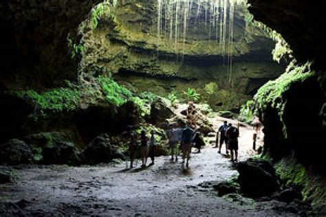 caves  official site   bahamas