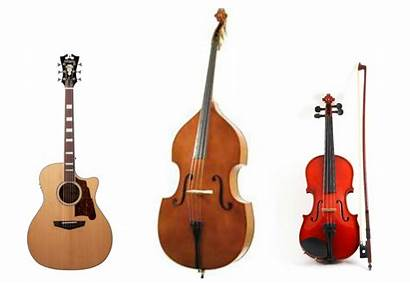String Instrument Instruments Humidity Care Musical Russ