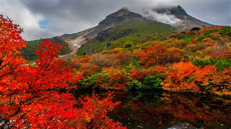 nature images hd autumn  nasudake japan hd