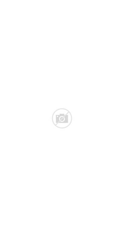 Garden English Cottage Romantic Sanctuary Flower Garten