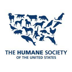 animal rights activists  organizations speaking