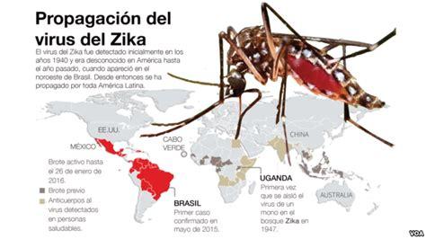 si鑒e oms avatares de la vida a traves de los ojos de un gato alarma por zika y una hipótesis sobre la propagación
