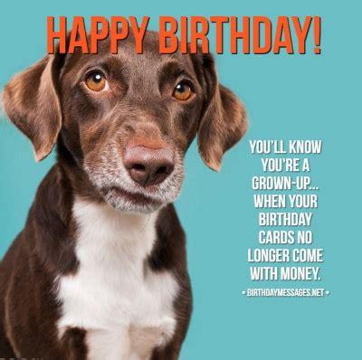 funny birthday wishes birthday quotes funny birthday