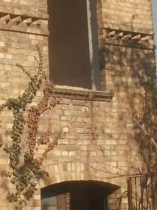 Steine Für Die Wand : wand deko steine verlegen verschiedene ideen f r die raumgestaltung inspiration ~ Sanjose-hotels-ca.com Haus und Dekorationen