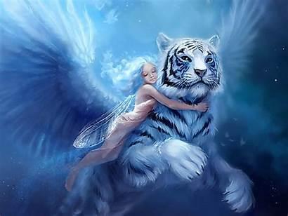 Fantasy Fairies Fairy Backgrounds Wallpapers Desktop Tiger