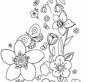 Coloring Pictures Of Flowers And Butterflies – Color Bros