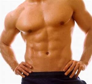 Abdomen Muscles  U2013 Organs  Function  Conditions  U0026 Exercises