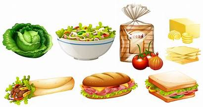 Different Kinds Vector Kind Illustration Types Cookies